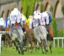chester races places to visit UK