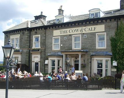 ilkley moor uk things to do uk travel cow and calf